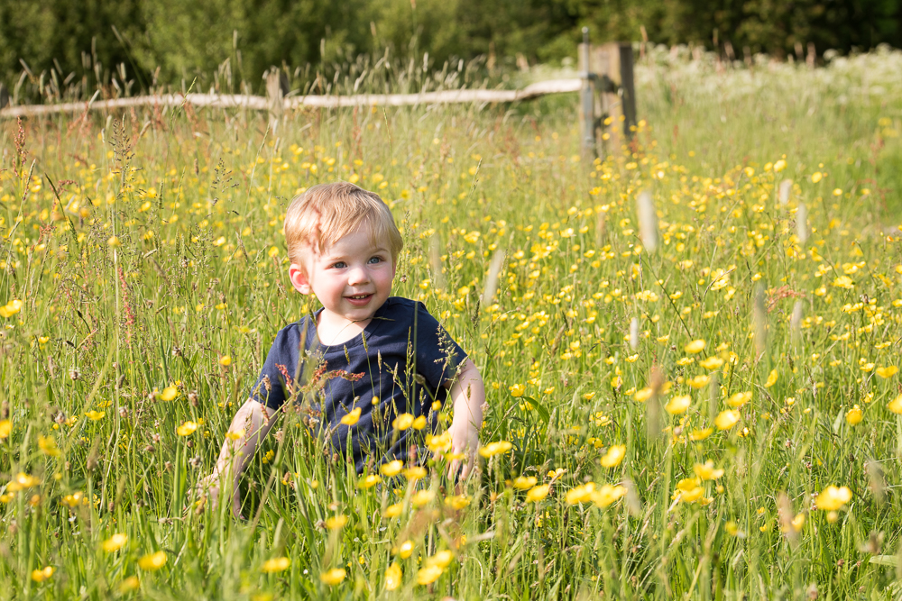 children photography kent - boy in a meadow